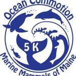 OceanCommotionLogo