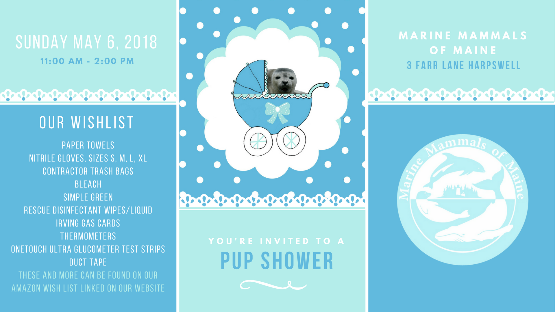 You're Invited to a Pup Shower! @ Marine Mammals of Maine